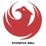 phoenixshirt